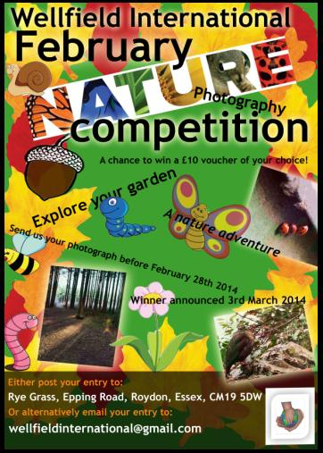 February Photography Competition